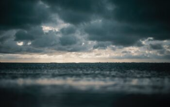 Zdjęcie poglądowe przedstawiające morze
